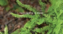 This Earth is Ours Spreads_approved 1