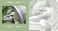 Invitation to Beauty_Interior 17
