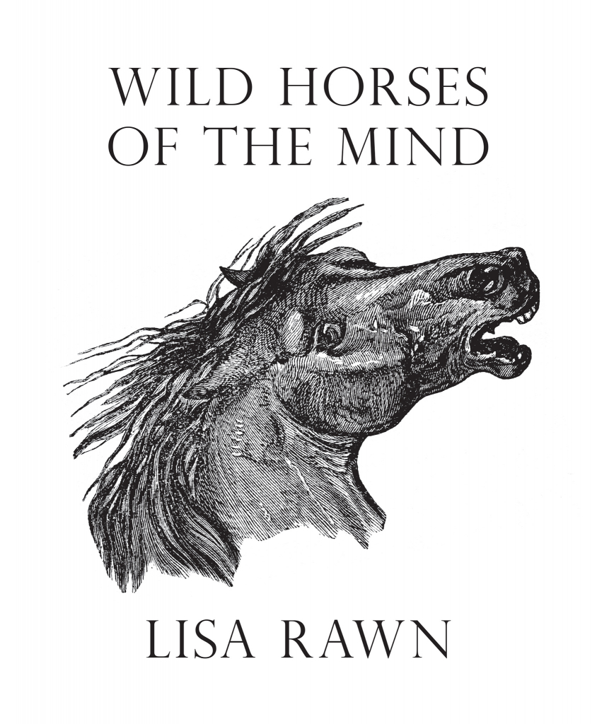 front cover Wild Horses of the Mind